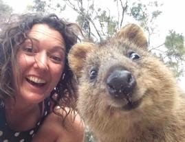 Quokka Selfie 3.jpg